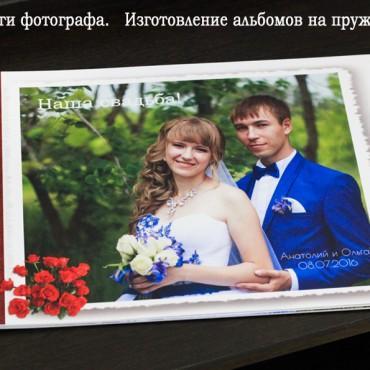 Фотография #230638, автор: Елена Бабич