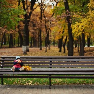 Фотография #287584, автор: Алена Воробьева
