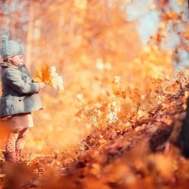 Фотография #290748, автор: Зоя Павкина