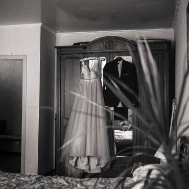 Фотография #293981, автор: Елена Чистопольцева