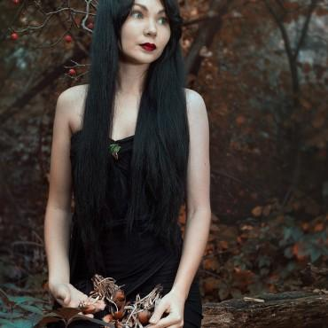 Фотография #292754, автор: Клавдия Зайцева