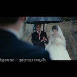 Видео #531521, автор: Николай Гусев