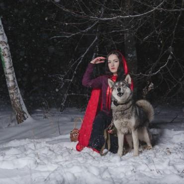 Фотография #615099, автор: Елизавета Арсланова