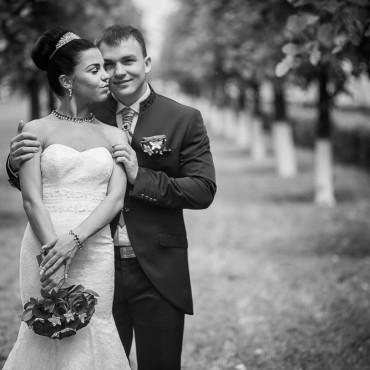 Фотография #163310, автор: Виталий Ревенко