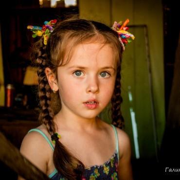 Фотография #163468, автор: Галина Коврижных