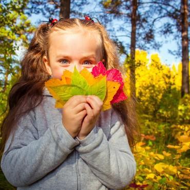 Фотография #163512, автор: Галина Коврижных