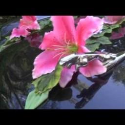 Видео #575849, автор: Александр Петраков