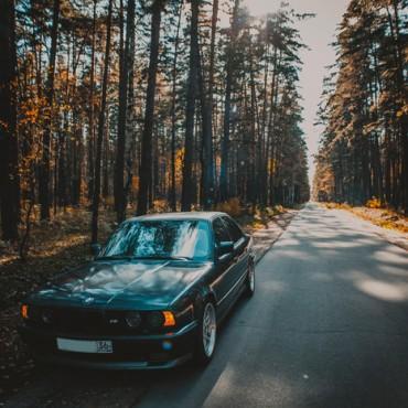 Фотография #581918, автор: Андрей Санин