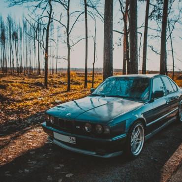 Фотография #581921, автор: Андрей Санин