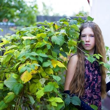 Фотография #598458, автор: Елена Вершинина