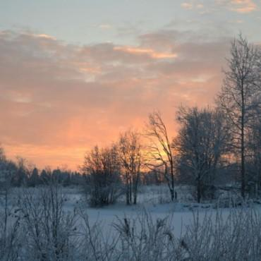 Фотография #373841, автор: Екатерина Морозова