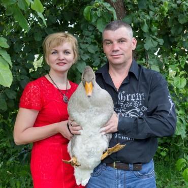 Фотография #374533, автор: Алексей Ширинкин