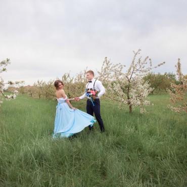 Фотография #205148, автор: Татьяна Омельченко