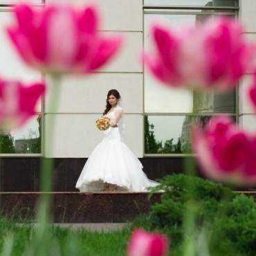 Фотография #168994, автор: Наталья Обыденова