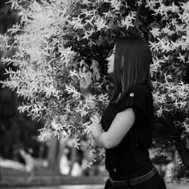 Фотография #170094, автор: Ангелина Ксандопуло