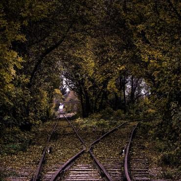 Фотография #203619, автор: Денис Лысаченко