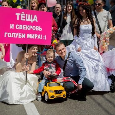 Фотография #204527, автор: Анна Харченко