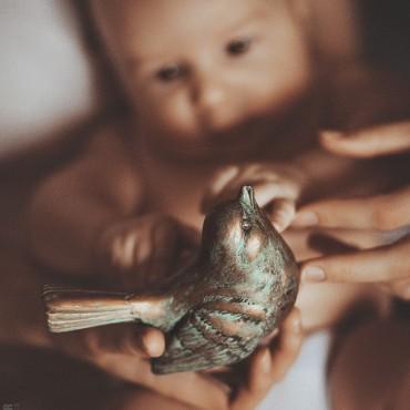 Альбом: Детская фотосъемка, 50 фотографий