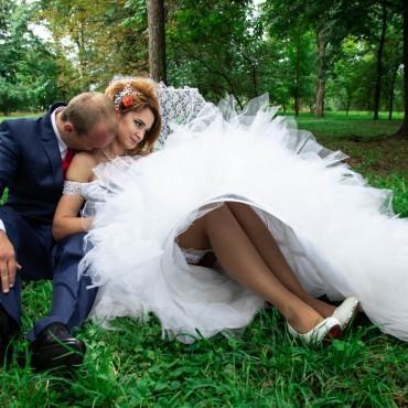 Фотография #201070, автор: Юлия Петлякова