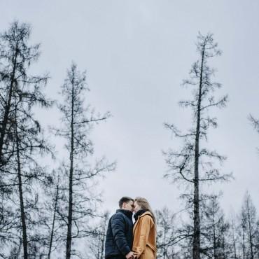 Фотография #201404, автор: Катерина Миронова