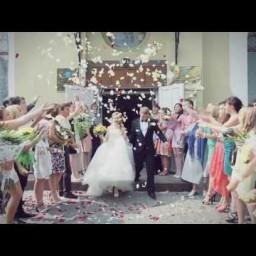 Видео #299246, автор: Сергей Лукьянов