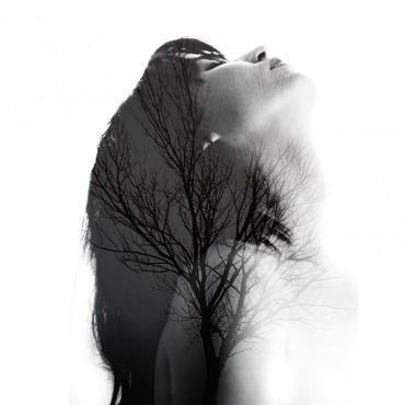Фотография #303127, автор: Мария Молчанова