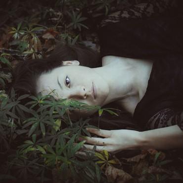 Фотография #300835, автор: Мария Молчанова