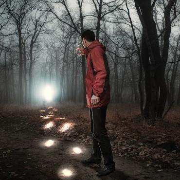 Фотография #315765, автор: Дмитрий Журавлев