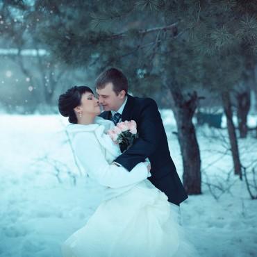 Фотография #305102, автор: Светлана Комлева
