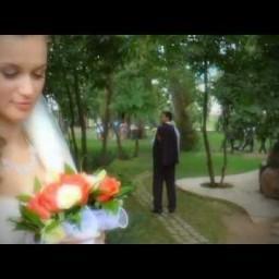 Видео #299136, автор: Андрей Сусликов