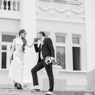 Фотография #309823, автор: Светлана Пронина