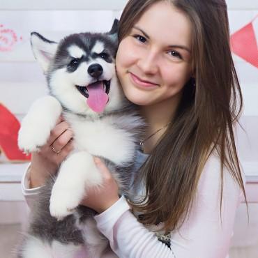 Фотография #302987, автор: Мария Стрелкова