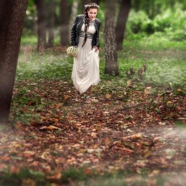 Фотография #305701, автор: Артем Крашенинников