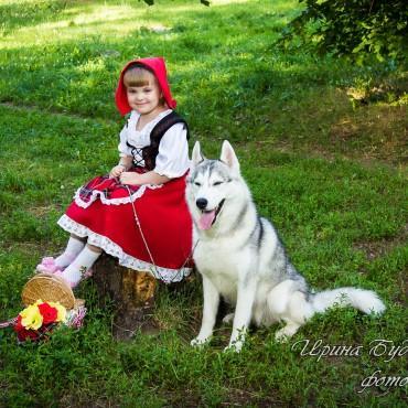 Фотография #318177, автор: Ирина Будимирова
