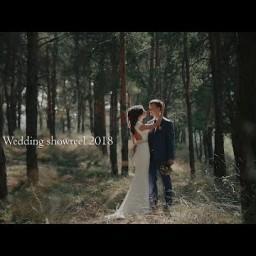 Видео #299531, автор: Алексей Потемкин
