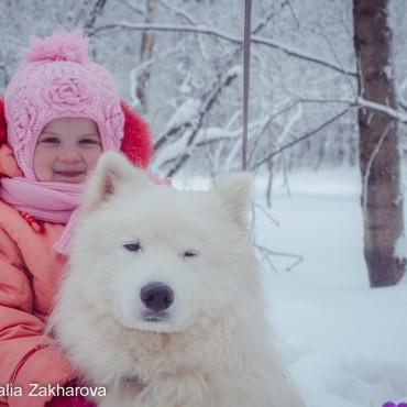 Фотография #304339, автор: Наталья Захарова
