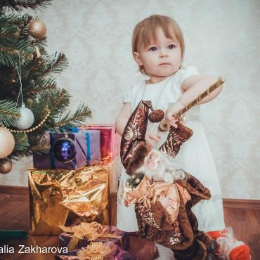 Фотография #304336, автор: Наталья Захарова