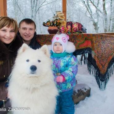 Фотография #304342, автор: Наталья Захарова