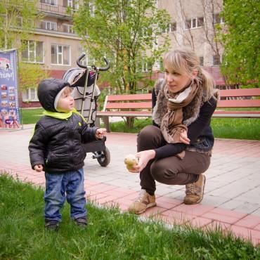Фотография #311372, автор: Алена Колесова