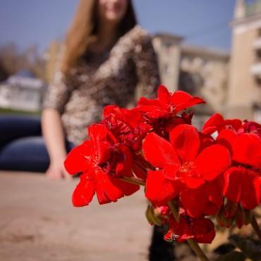 Фотография #305194, автор: Алена Колесова