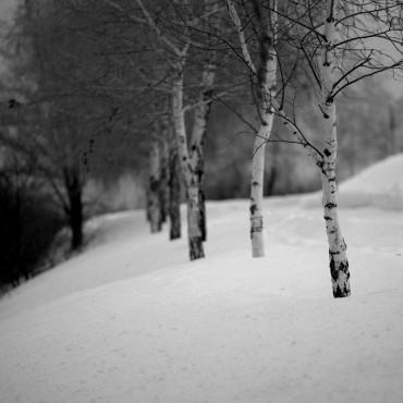 Фотография #312323, автор: ильгам кильдеев
