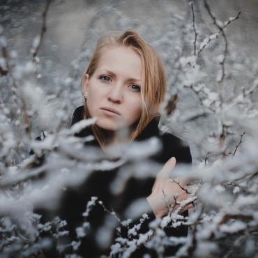 Фотография #305232, автор: Алина Осенняя
