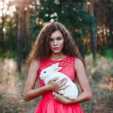Фотография #317514, автор: Екатерина Хмелевская