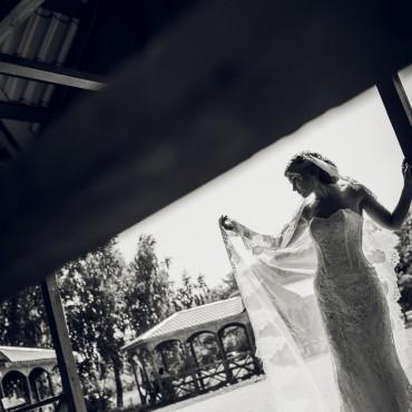 Фотография #308694, автор: Ирина Захаркина