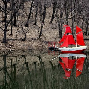 Фотография #310201, автор: Оксана Полякова