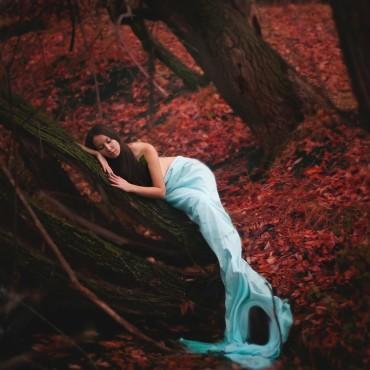 Фотография #310757, автор: Катерина Романова