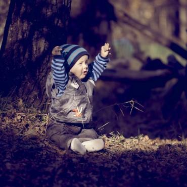 Фотография #311535, автор: Александр Тарасов