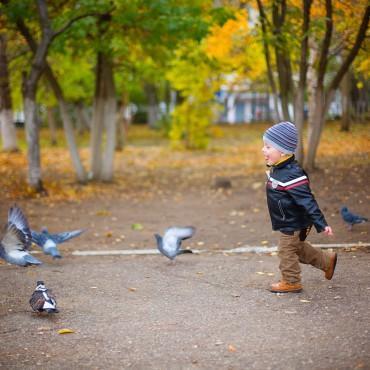 Фотография #322590, автор: Ирина Акчурина