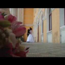 Видео #299521, автор: Илья Чепакин