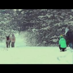 Видео #463082, автор: Татьяна Черкашина